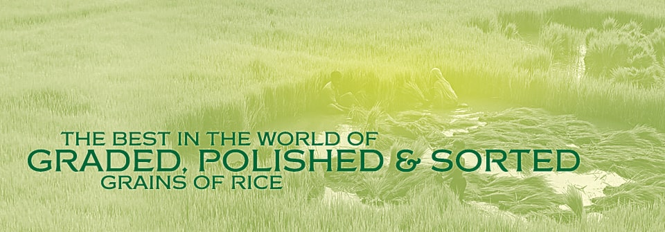 Corporate Rice and General Mills Page Banner