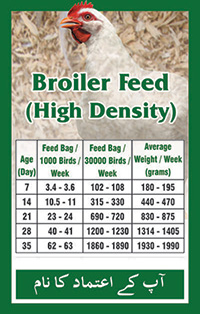 Broiler Feed High Density