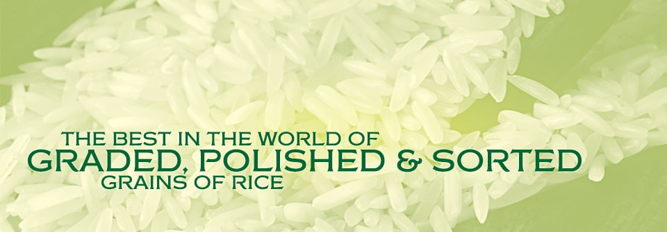 Kausar Rice Standards Page Banner