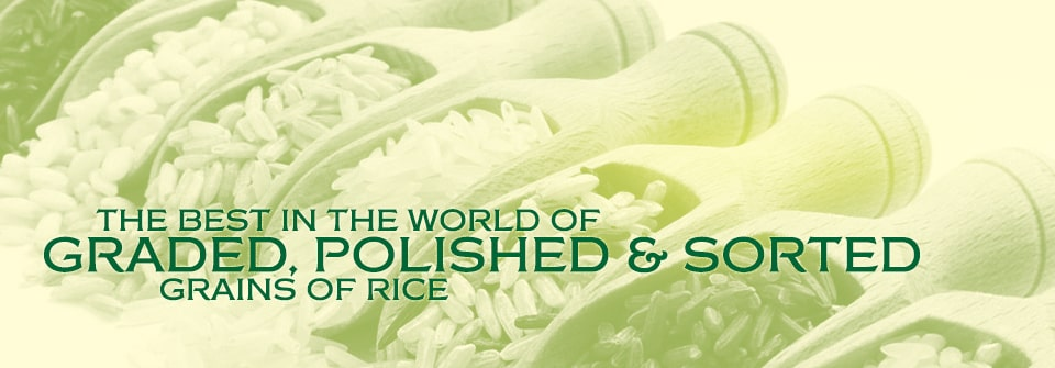Kausar Rice Varieties Page Banner
